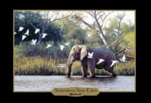 John Banovich: Elephants of Africa Note Cards