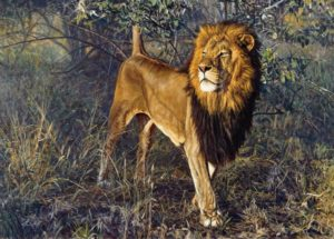 John Banovich: King of Beasts Note Cards