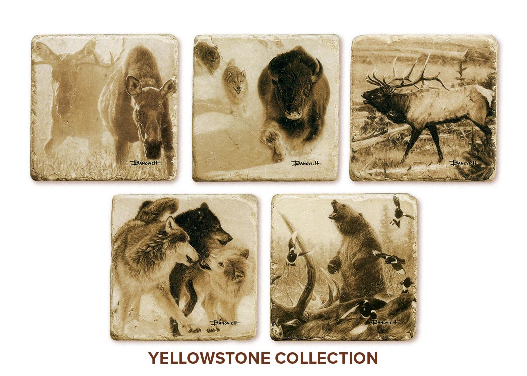 John Banovich: Yellowstone Collection Coasters