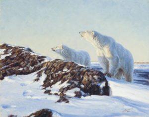 John Banovich: White Bear Note Cards